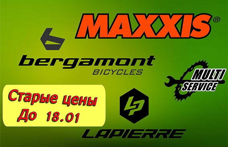 Bergamont Lapierre Maxxis