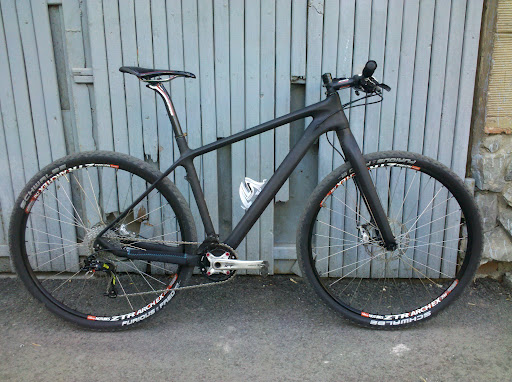Carbon 29er OEM Rigid